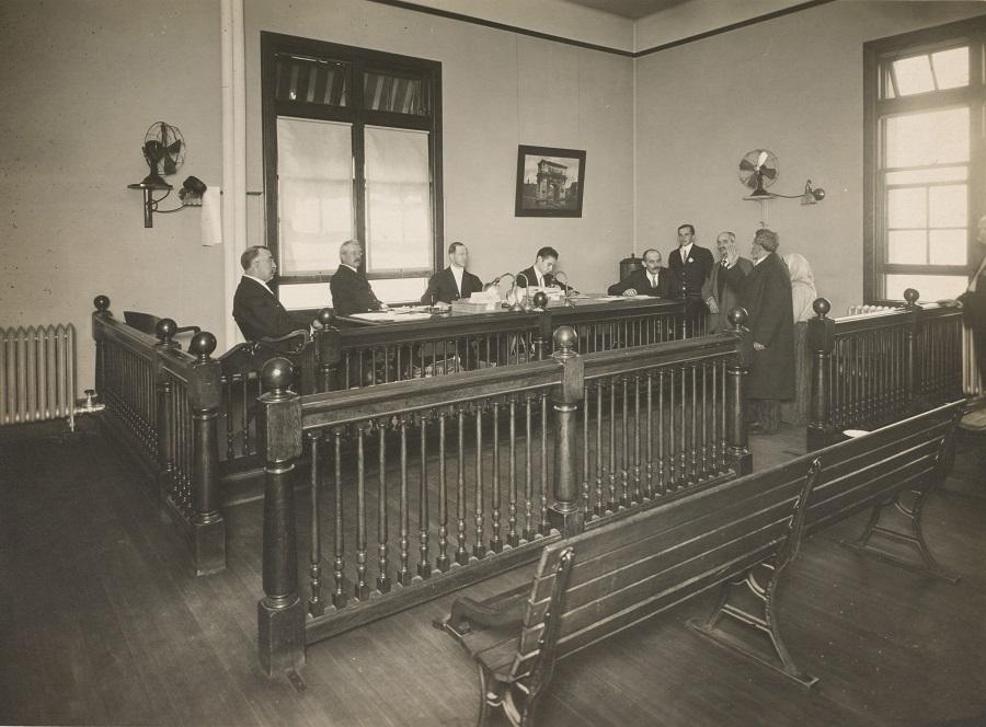 סקר עד מומחה בבית משפט